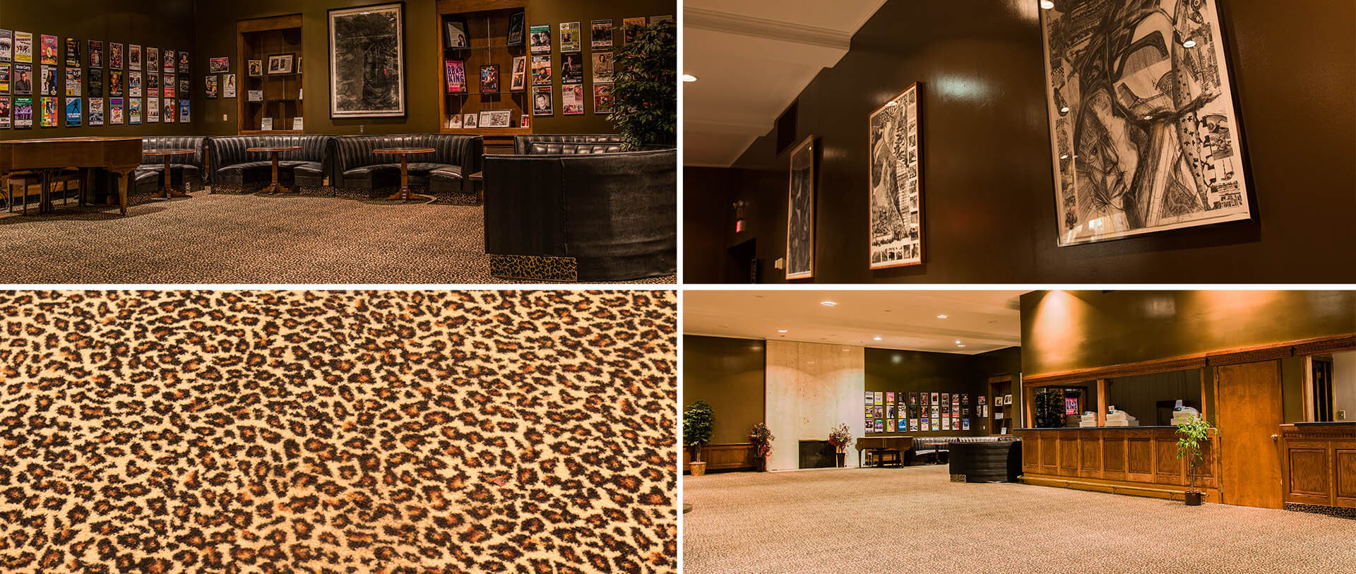 leopard lounge collage